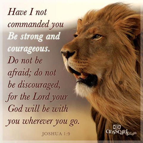 wpid-299211_558614944168857_610085436_n-mighty-men-of-god-lion-courage.jpg